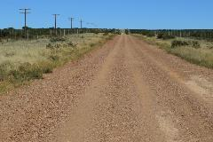 Dirt road with telephone poles