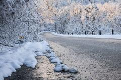 snowy curve in road
